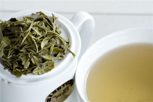 White Tea grown under Shades