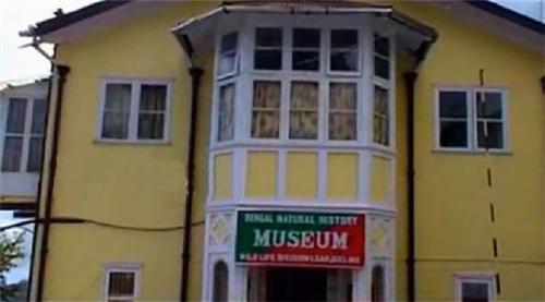 Bengal Natural History Museum in Darjeeling