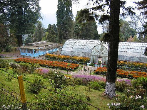 Lloyd Botanical Garden of Darjeeling