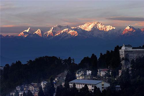 Business and Industry in Darjeeling