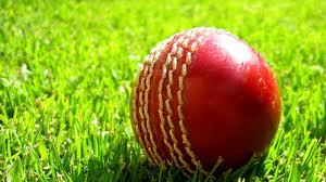 Cricket in Gandhinagar
