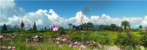 Distance between Darjeeling and Guwahati