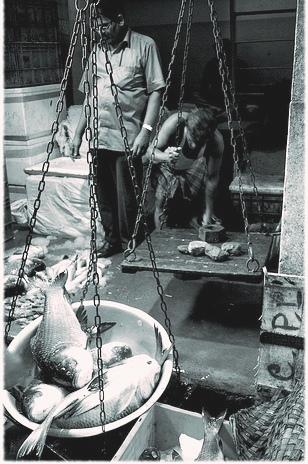 Fish Bazaar Howrah