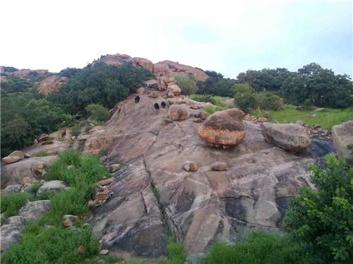 Wildlife Sanctuaries in Hubli