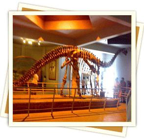 Dinosorium