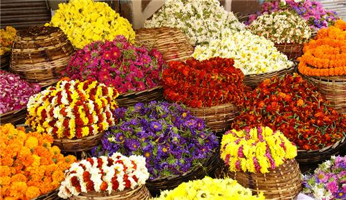 wholesale market in Coimbatore