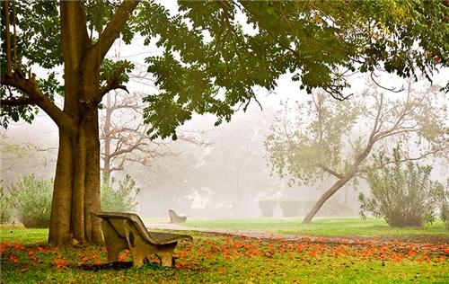 Parks and Gardens in Indore