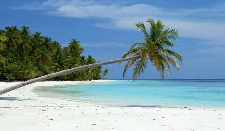अंडमान में नील द्वीप समुद्र तट