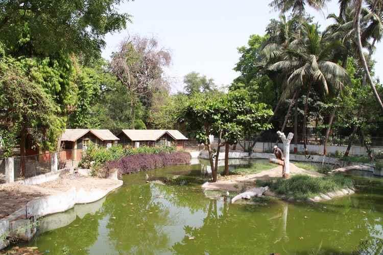 भारत के खूबसूरत उद्यान