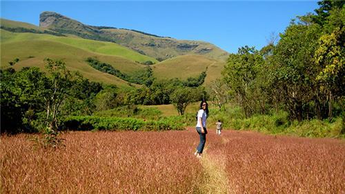 Best trekking spots in Karnataka