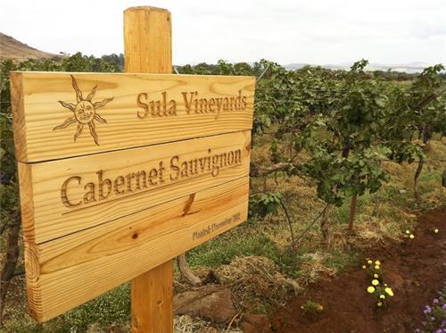 Sula Vineyards in Nashik