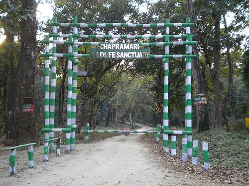Chapramari Wildlife Sanctuary