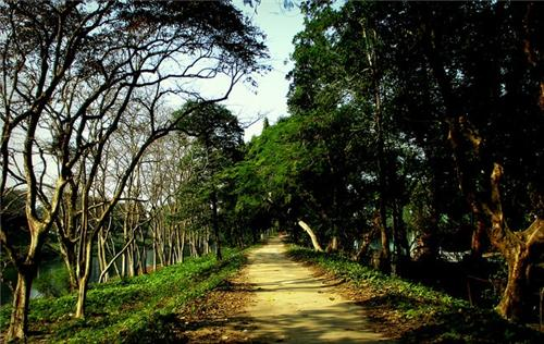Sightseeing in Jalpaiguri