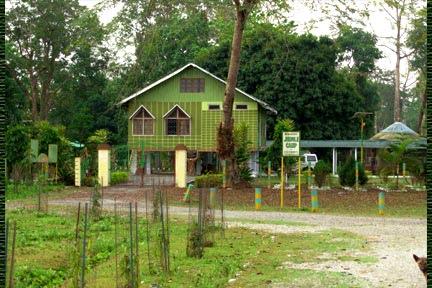 Chilapata Forest Jalpaiguri District