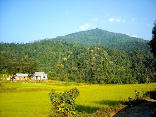 Samsing in Jalpaiguri