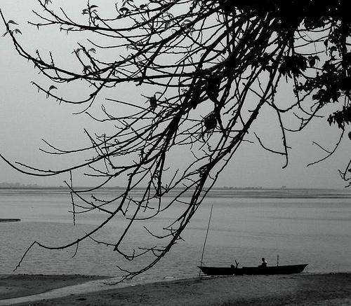 Teest River