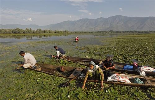 Collecting Water Chestnut in the Wulnar Lake