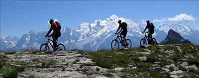 Cycling Expedition 