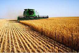 Agriculture in Junagadh