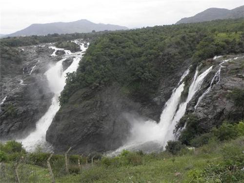 5 Popular Wildlife Sanctuaries in Karnataka