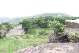 Profile of Pudu