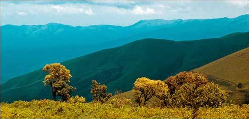 Kemmanagundi Hills near Udupi