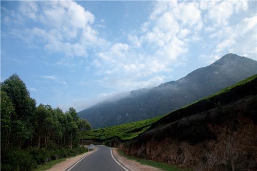Munnar Solo Travelling in Kerala