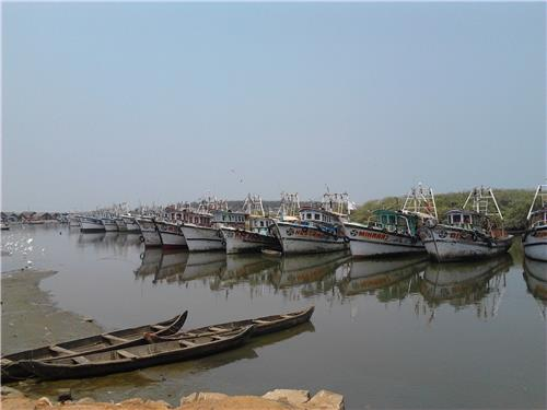 Economy and Industries in Ponnani