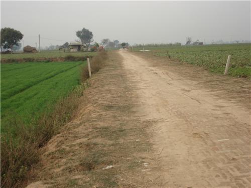 Ghurala Near Khanna