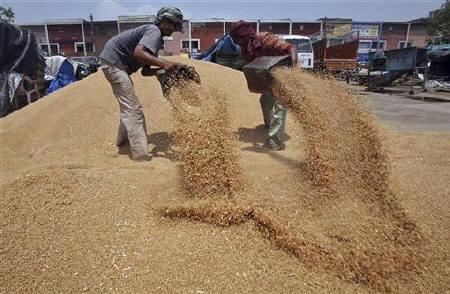 Largest Grain Market of Khanna
