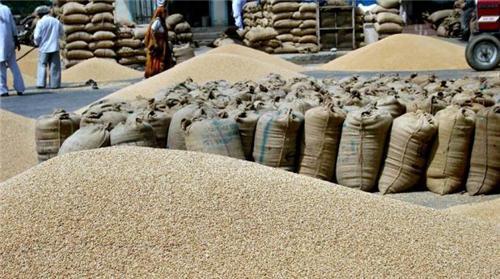 Nearby Area of Grain Market in Khanna