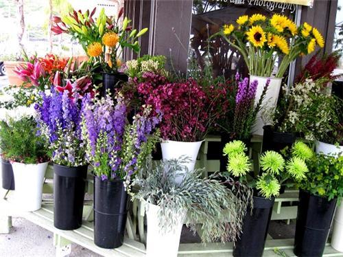Florists in Kochi