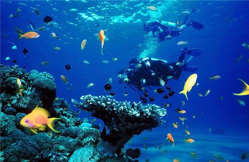 Facts About Lakshadweep Islands