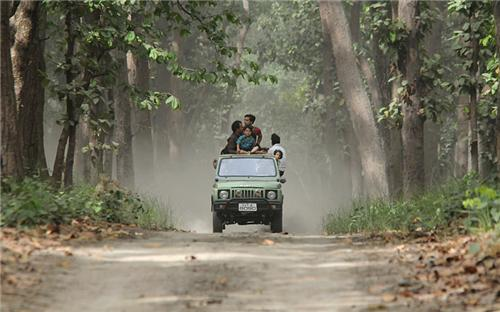 Dudhwa National Park Wildlife Sanctuary Near Lucknow