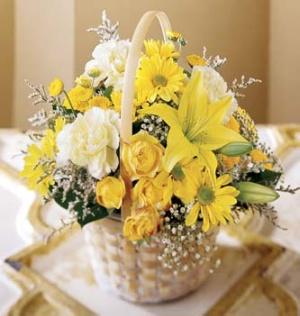 Florists in Aliganj Lucknow