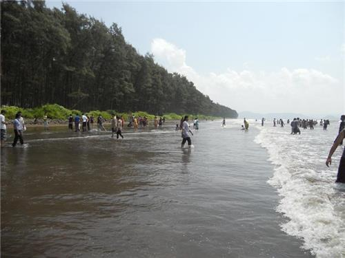 A Trip To All The Beautiful Beaches of Alibag