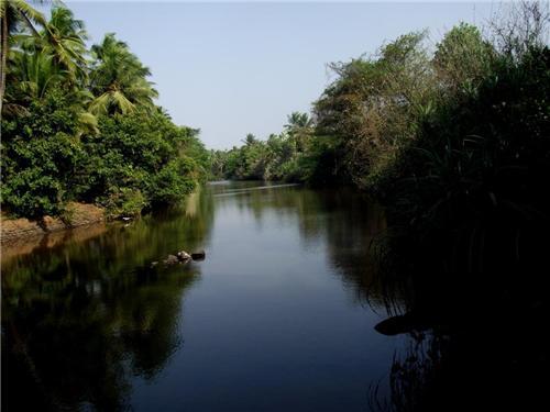 The Netravti River