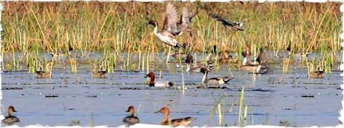 Tourist places near Mirzapur