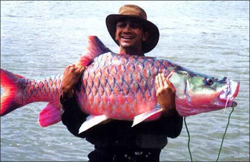 Fishing in Mizoram