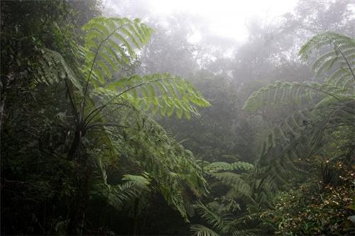 Sagar Climate