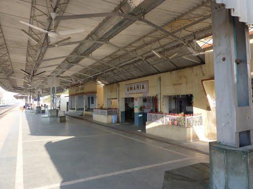 Trains in Umaria