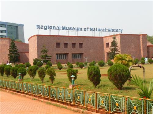 RMNH in Mysore