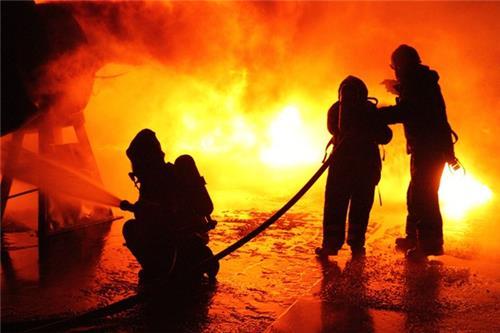 nagaland fire service