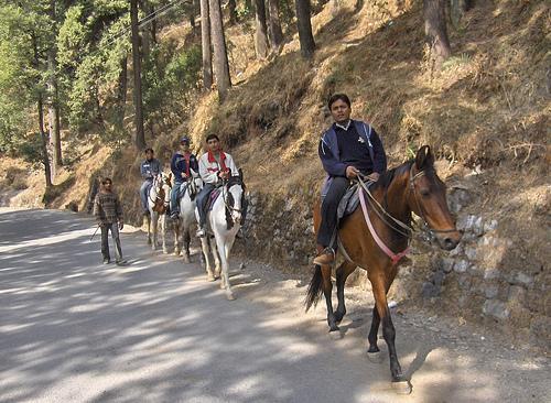 Places to visit Horse Riding Nainital