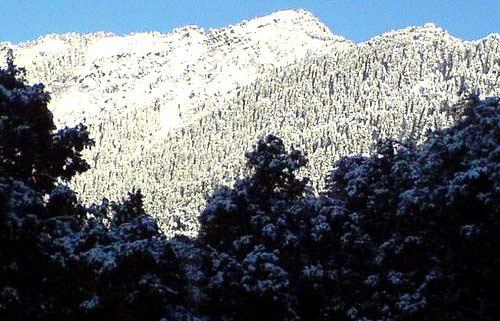 Nainital Naina Peak