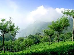 The Refreshing Hills of Conoor