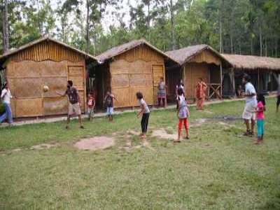 Junle Camping