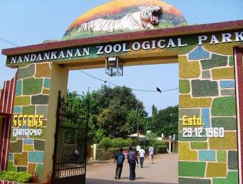 Wildlife in Odisha