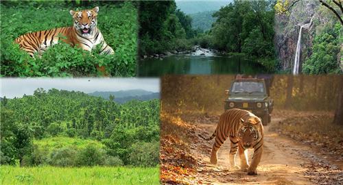 Similipal forest Park near Baripada