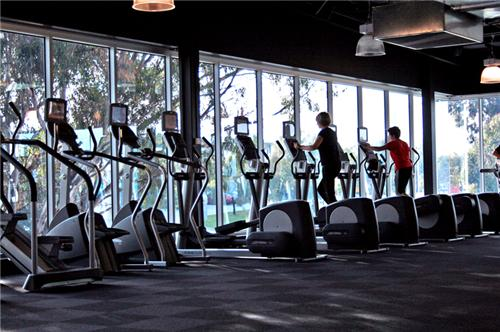 Gyms in Panchkula